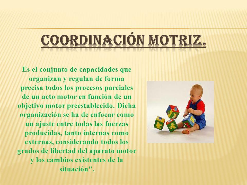 COORDINACIÓN MOTRIZ.