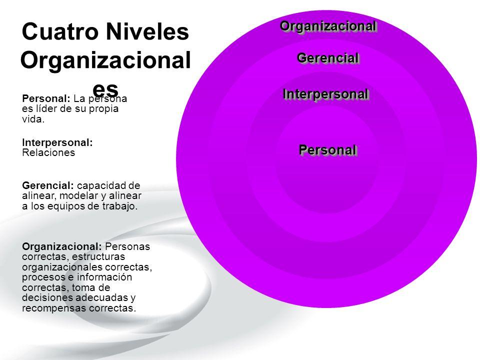 Cuatro Niveles Organizacionales