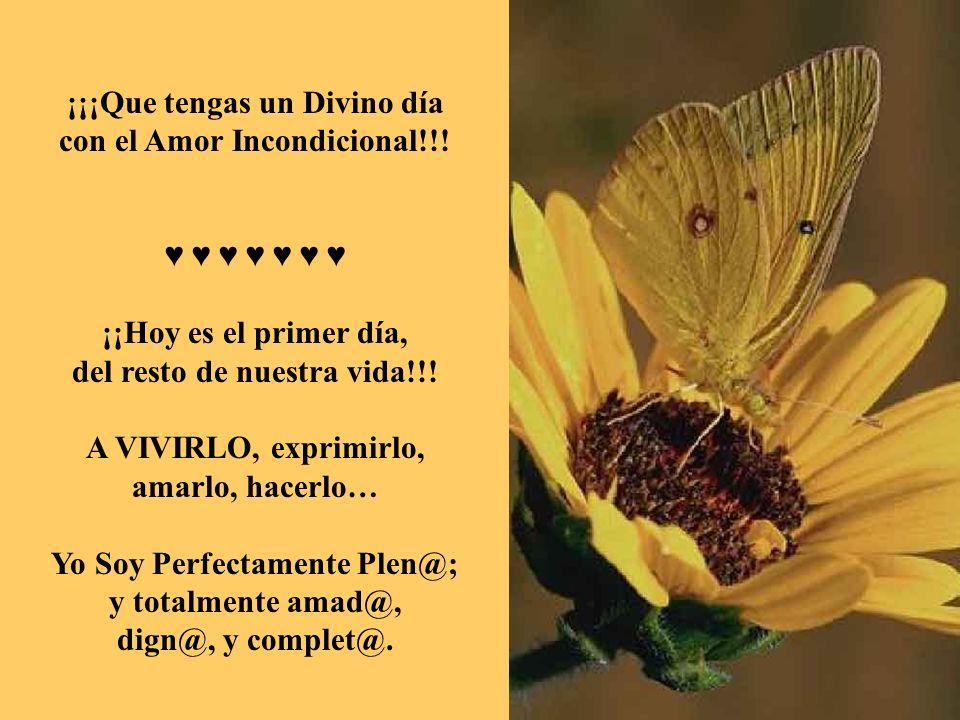 ¡¡¡Que tengas un Divino día con el Amor Incondicional!!! ♥ ♥ ♥ ♥ ♥ ♥ ♥