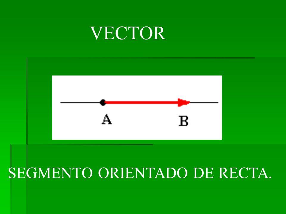 VECTOR SEGMENTO ORIENTADO DE RECTA.
