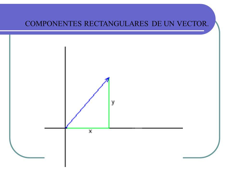 COMPONENTES RECTANGULARES DE UN VECTOR.
