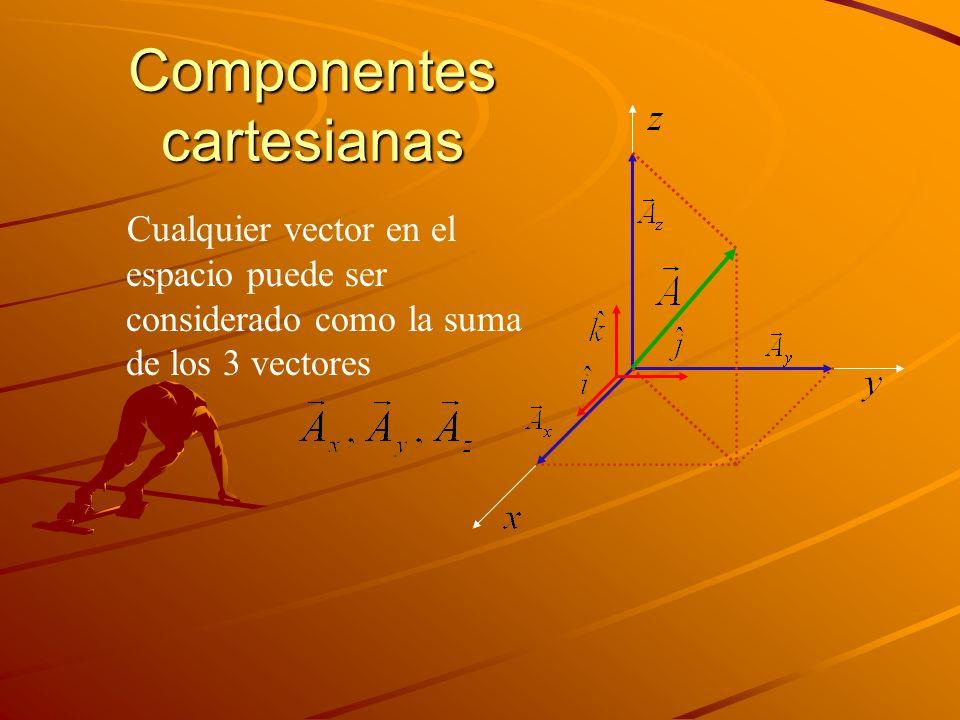 Componentes cartesianas