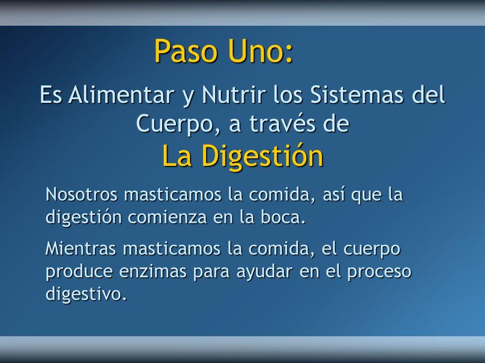 Es Alimentar y Nutrir los Sistemas del Cuerpo, a través de