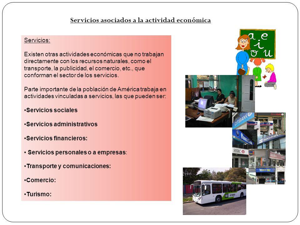 Servicios asociados a la actividad económica