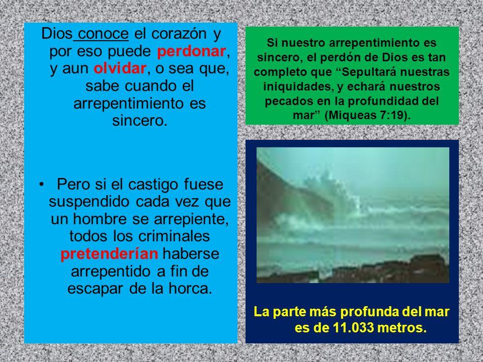 La parte más profunda del mar es de 11.033 metros.