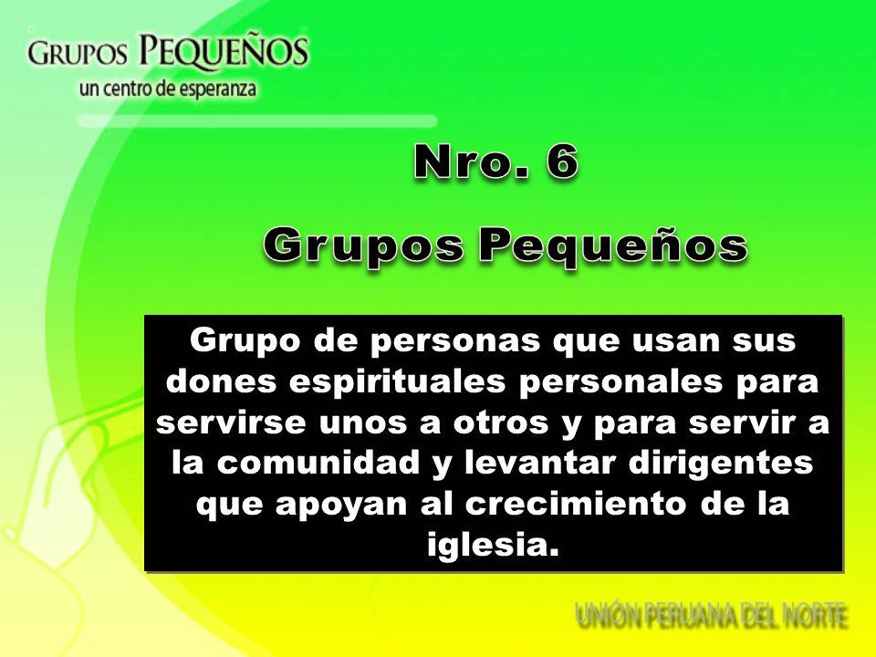 Nro. 6 Grupos Pequeños.