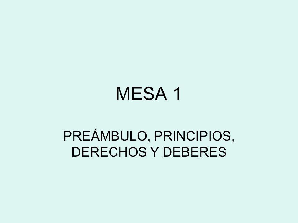 PREÁMBULO, PRINCIPIOS, DERECHOS Y DEBERES