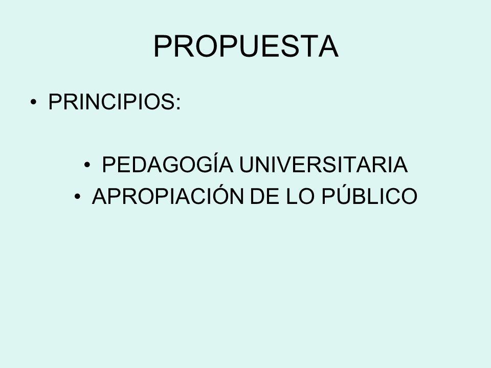 PROPUESTA PRINCIPIOS: PEDAGOGÍA UNIVERSITARIA