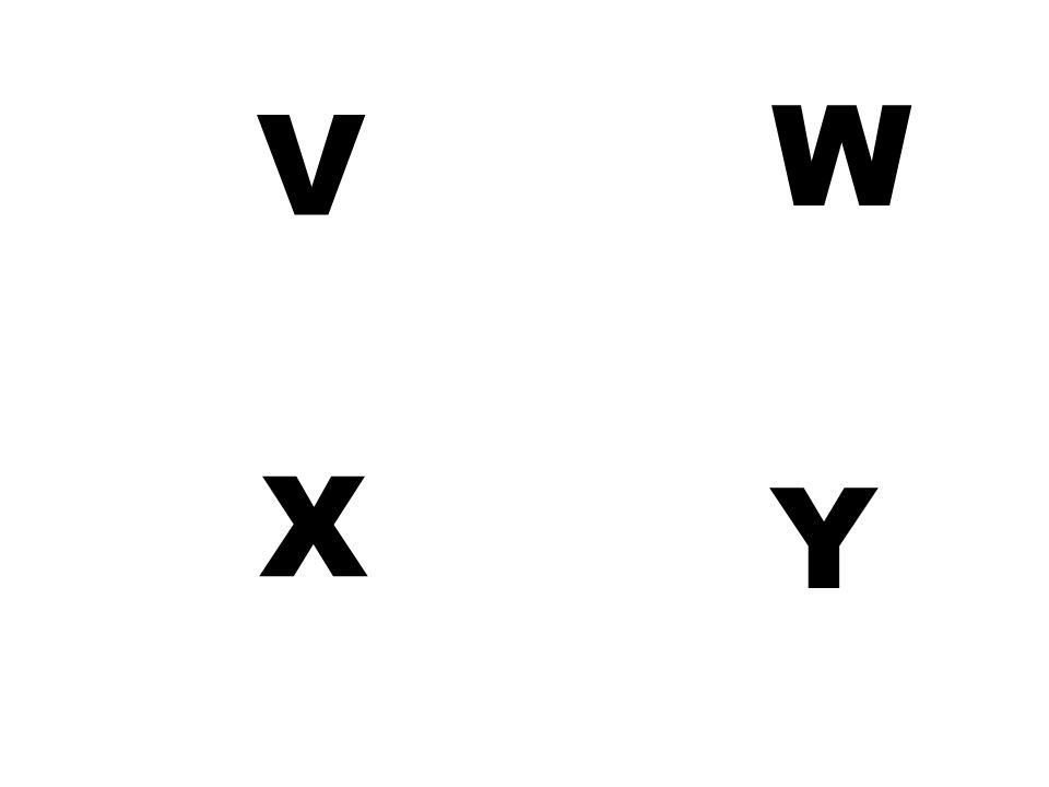 W V X Y