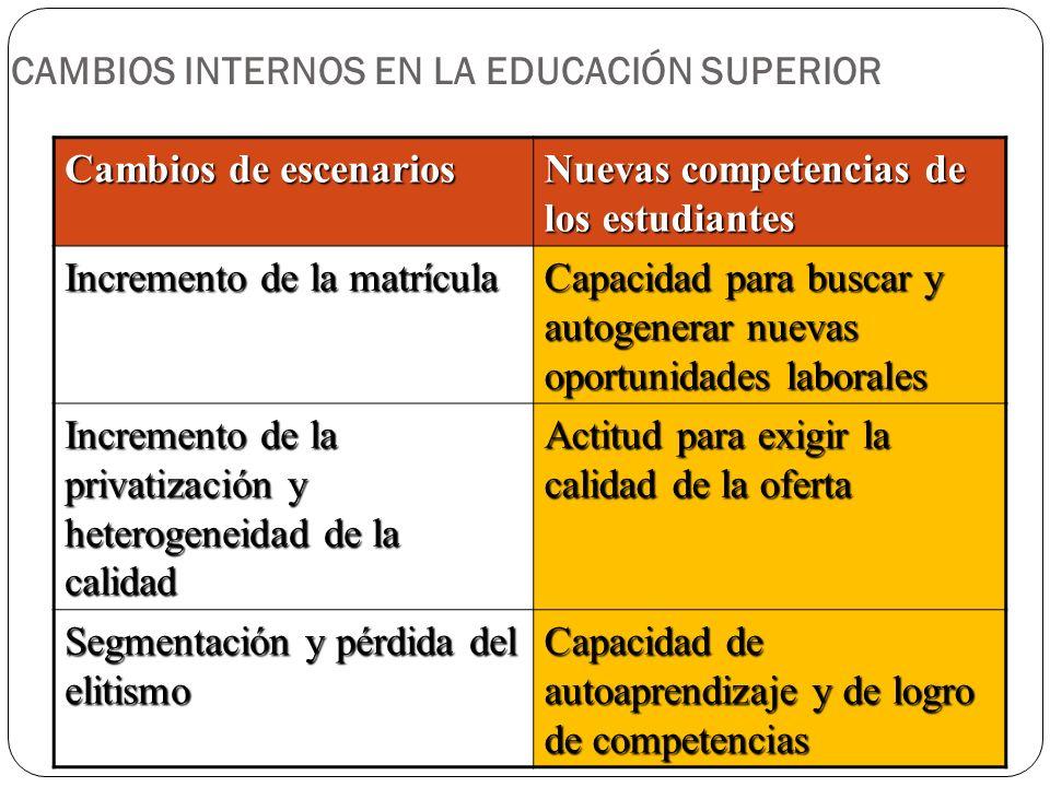 CAMBIOS INTERNOS EN LA EDUCACIÓN SUPERIOR
