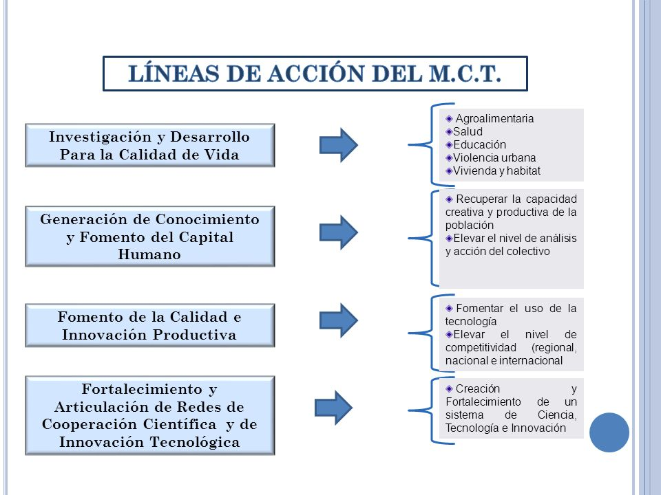 LÍNEAS DE ACCIÓN DEL M.C.T.