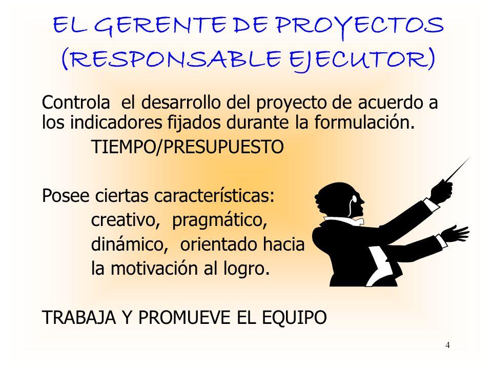 EL GERENTE DE PROYECTOS (RESPONSABLE EJECUTOR)