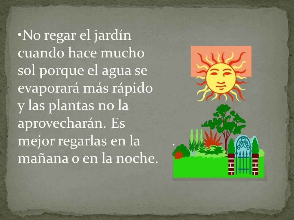 No regar el jardín cuando hace mucho sol porque el agua se evaporará más rápido y las plantas no la aprovecharán.