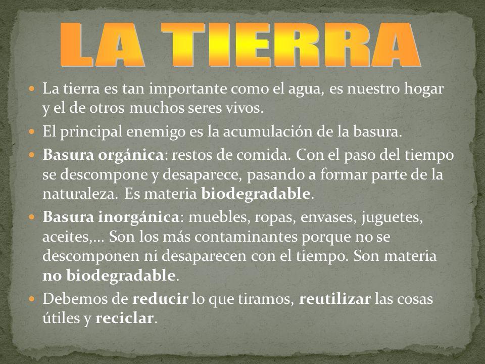 LA TIERRA La tierra es tan importante como el agua, es nuestro hogar y el de otros muchos seres vivos.