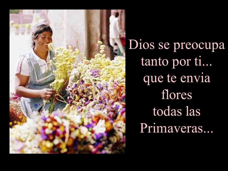 Dios se preocupa tanto por ti... que te envia flores todas las Primaveras...