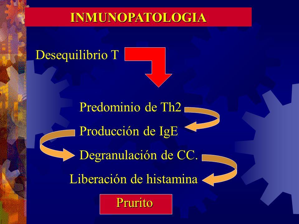 INMUNOPATOLOGIA Desequilibrio T. Predominio de Th2. Producción de IgE. Degranulación de CC. Liberación de histamina.
