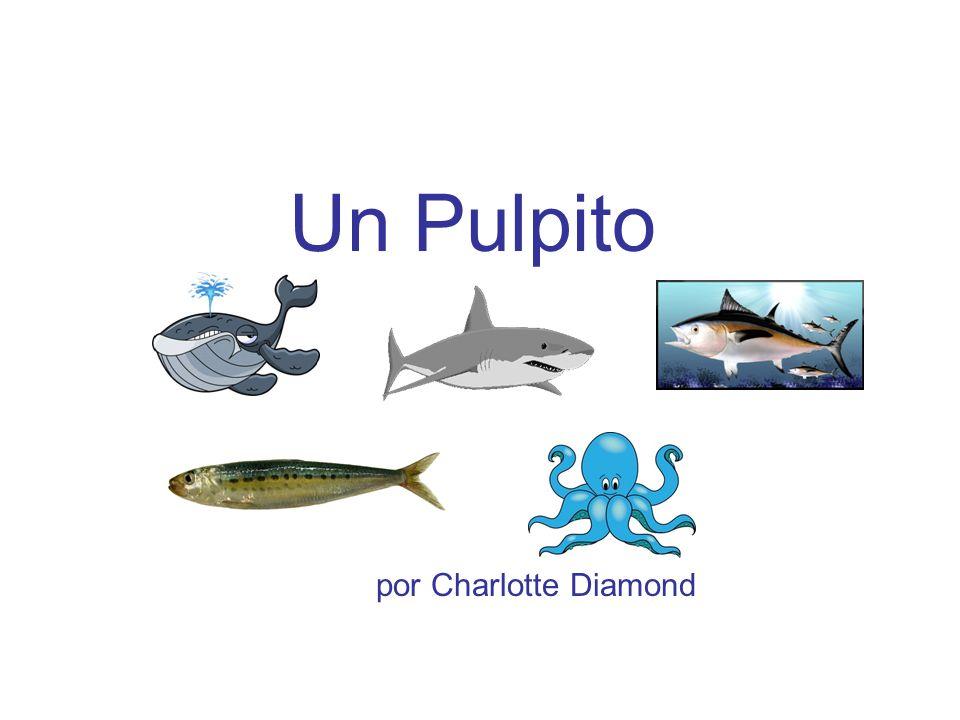 Un Pulpito por Charlotte Diamond