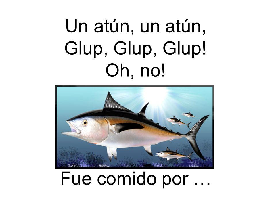 Un atún, un atún, Glup, Glup, Glup! Oh, no! Fue comido por …