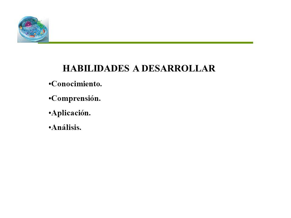 HABILIDADES A DESARROLLAR