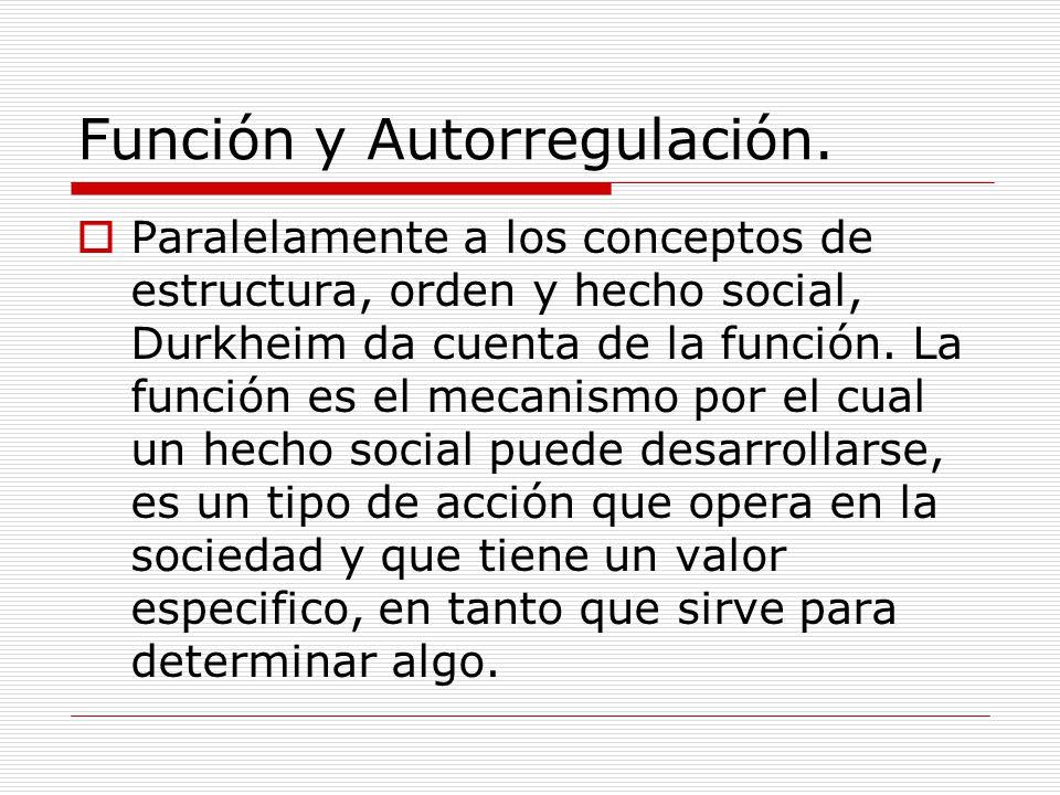 Función y Autorregulación.