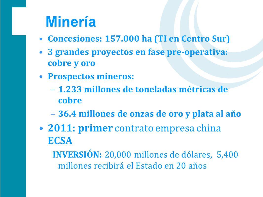Minería 2011: primer contrato empresa china ECSA