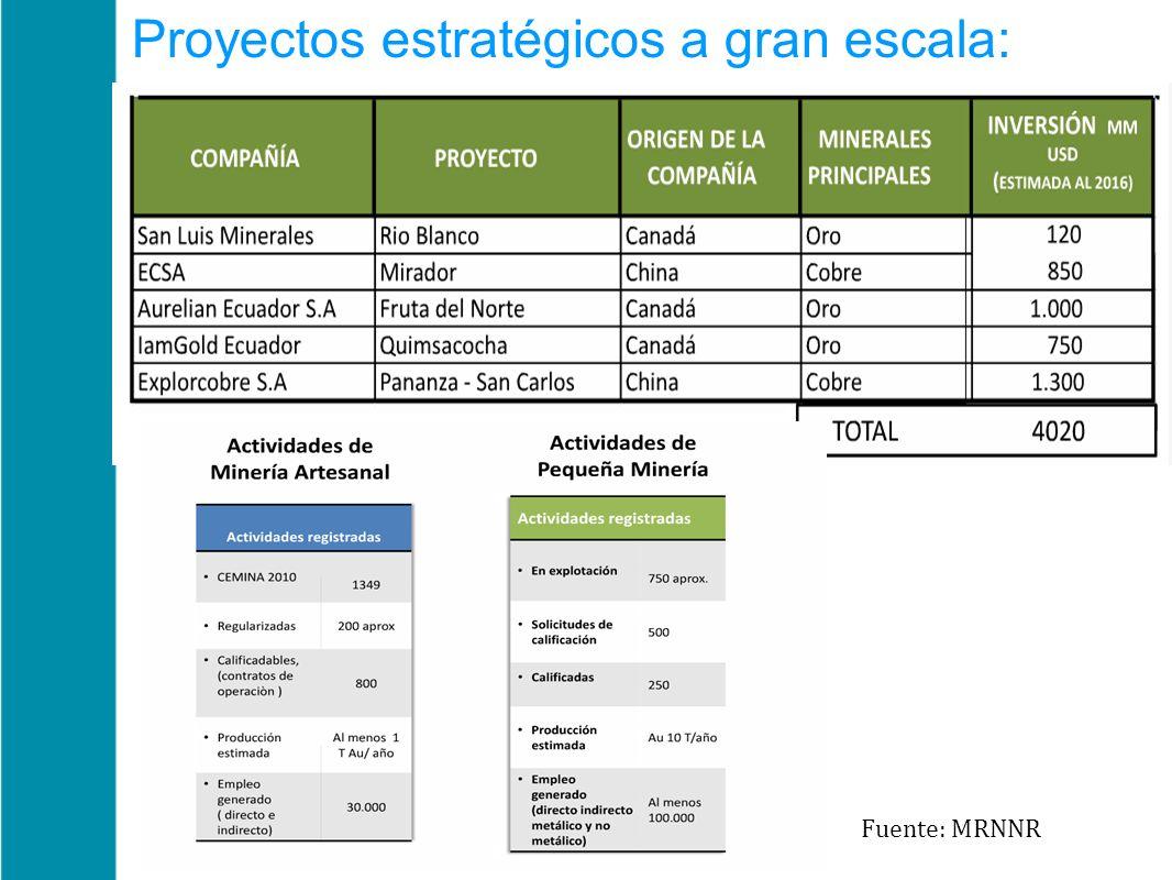 Proyectos estratégicos a gran escala: