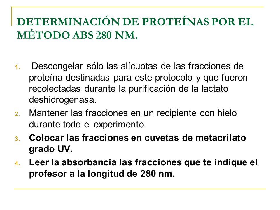 DETERMINACIÓN DE PROTEÍNAS POR EL MÉTODO ABS 280 NM.