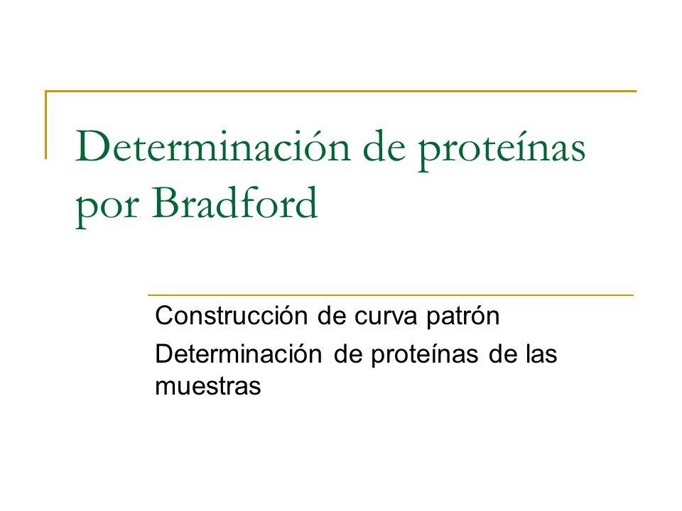 Determinación de proteínas por Bradford