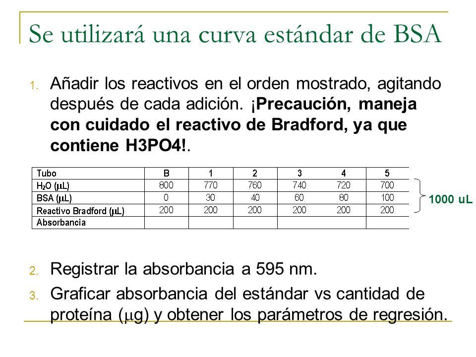 Se utilizará una curva estándar de BSA
