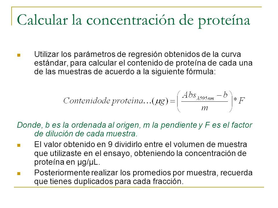 Calcular la concentración de proteína