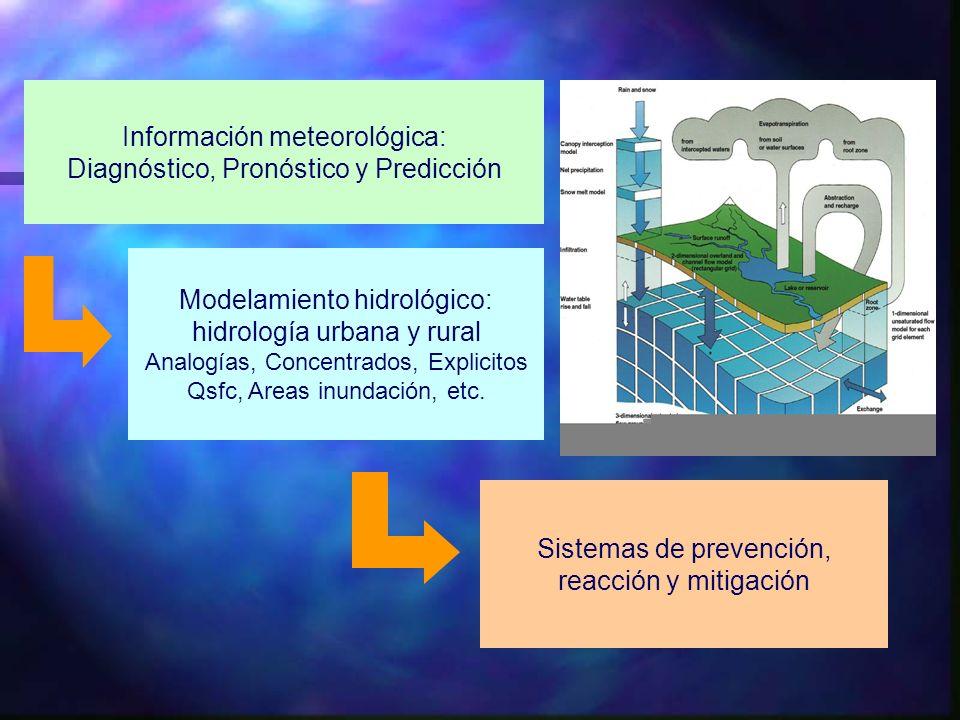Información meteorológica: Diagnóstico, Pronóstico y Predicción