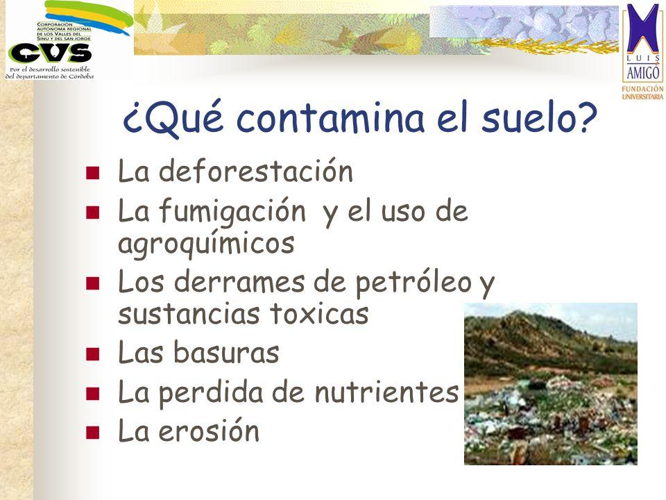 ¿Qué contamina el suelo