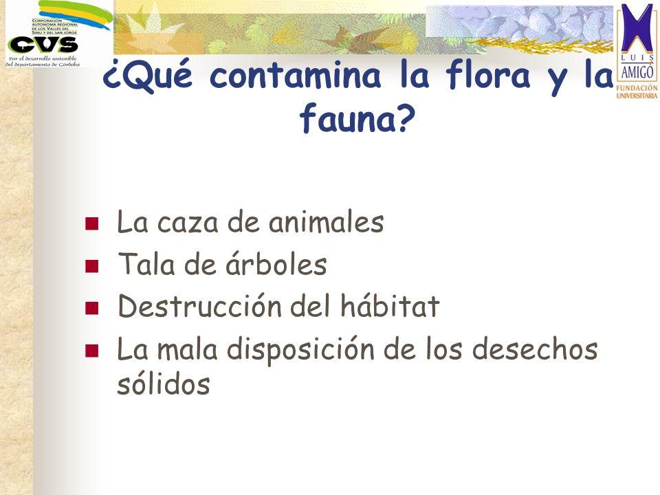 ¿Qué contamina la flora y la fauna
