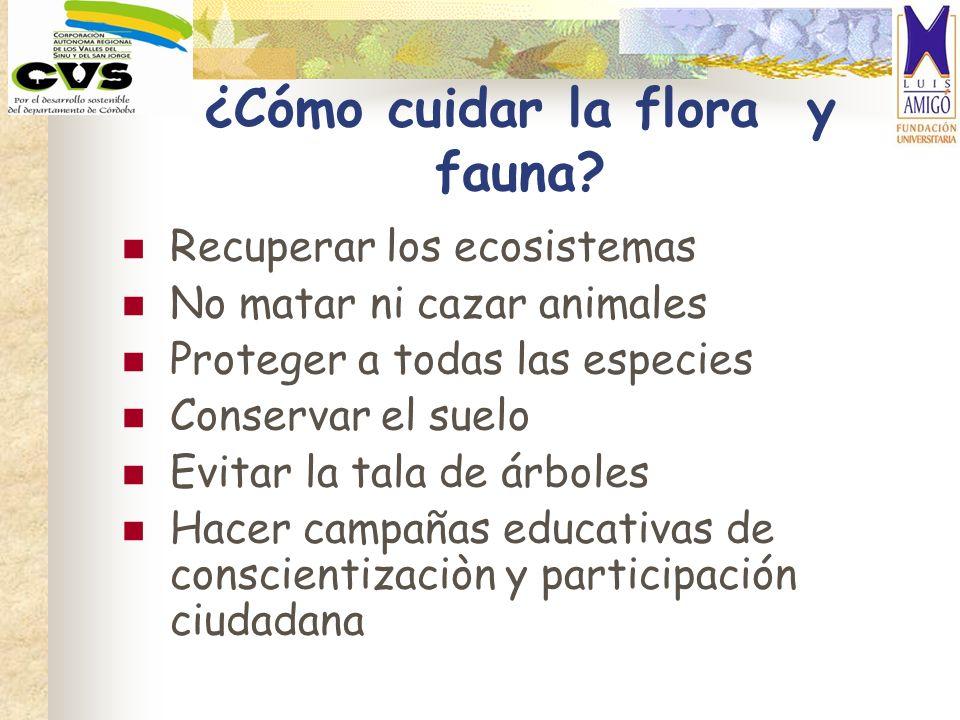 ¿Cómo cuidar la flora y fauna