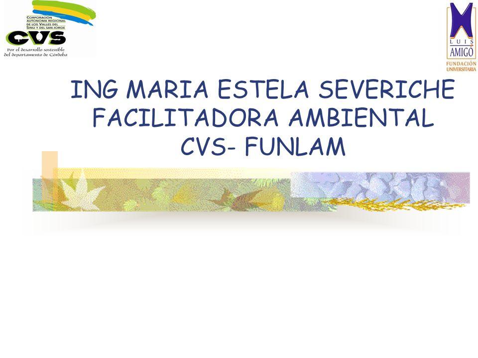 ING MARIA ESTELA SEVERICHE FACILITADORA AMBIENTAL CVS- FUNLAM