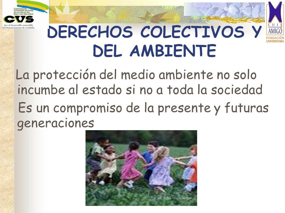 DERECHOS COLECTIVOS Y DEL AMBIENTE
