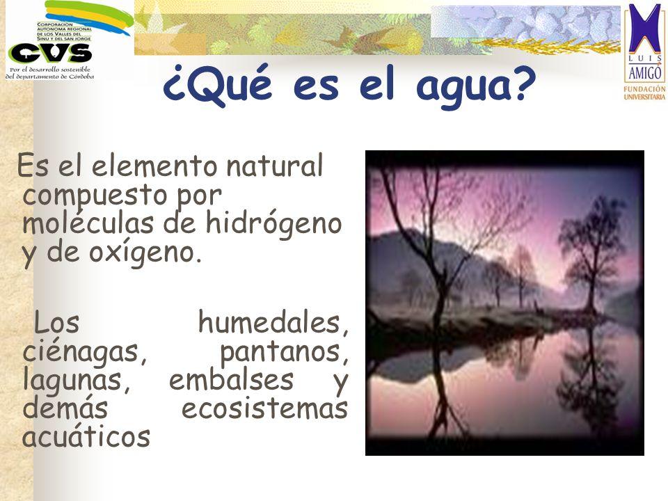 ¿Qué es el agua Es el elemento natural compuesto por moléculas de hidrógeno y de oxígeno.