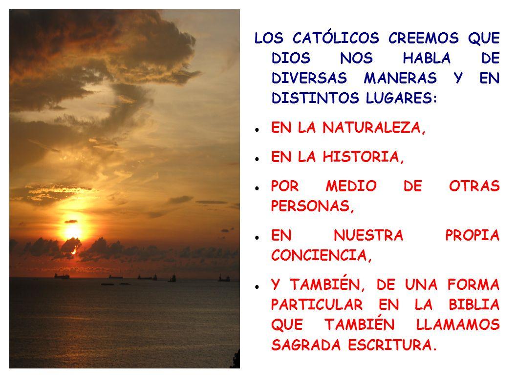 LOS CATÓLICOS CREEMOS QUE DIOS NOS HABLA DE DIVERSAS MANERAS Y EN DISTINTOS LUGARES: