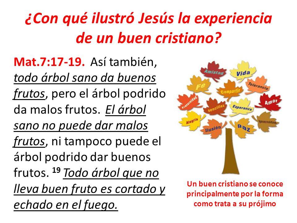 ¿Con qué ilustró Jesús la experiencia de un buen cristiano
