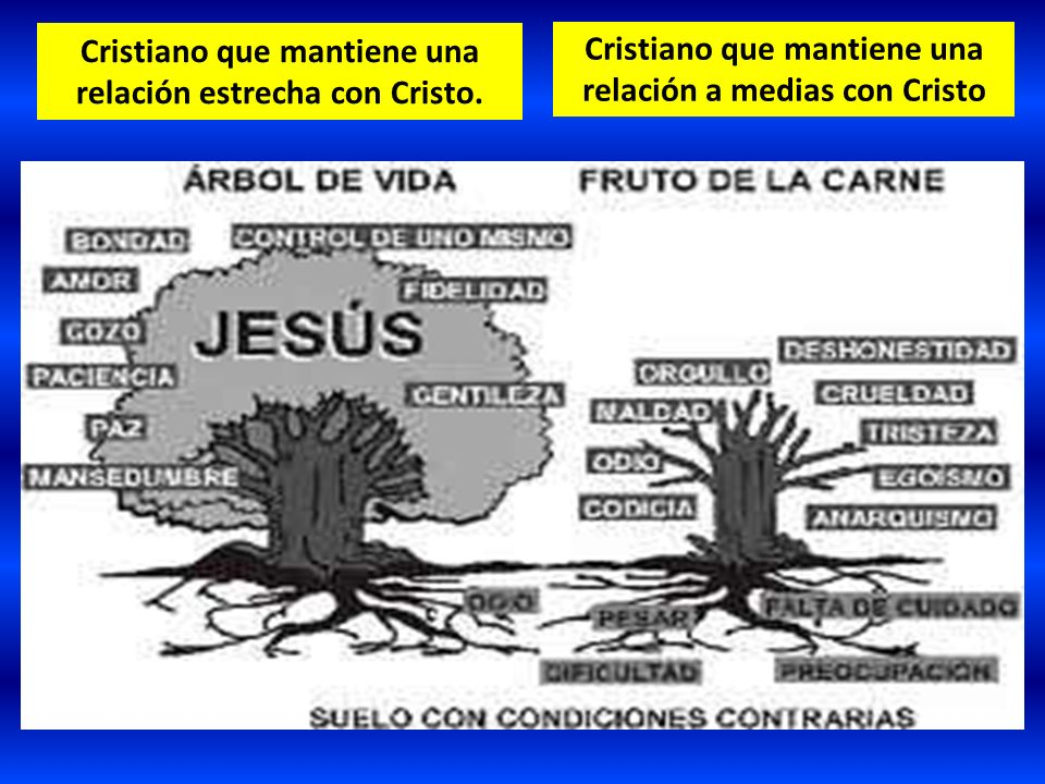Cristiano que mantiene una relación estrecha con Cristo.