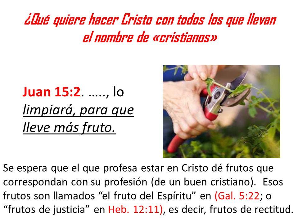 Juan 15:2. ….., lo limpiará, para que lleve más fruto.