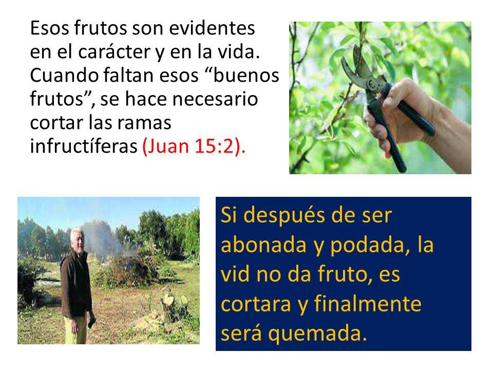 Esos frutos son evidentes en el carácter y en la vida