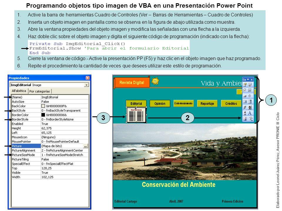 Programando objetos tipo imagen de VBA en una Presentación Power Point
