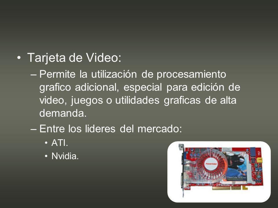 Tarjeta de Video: