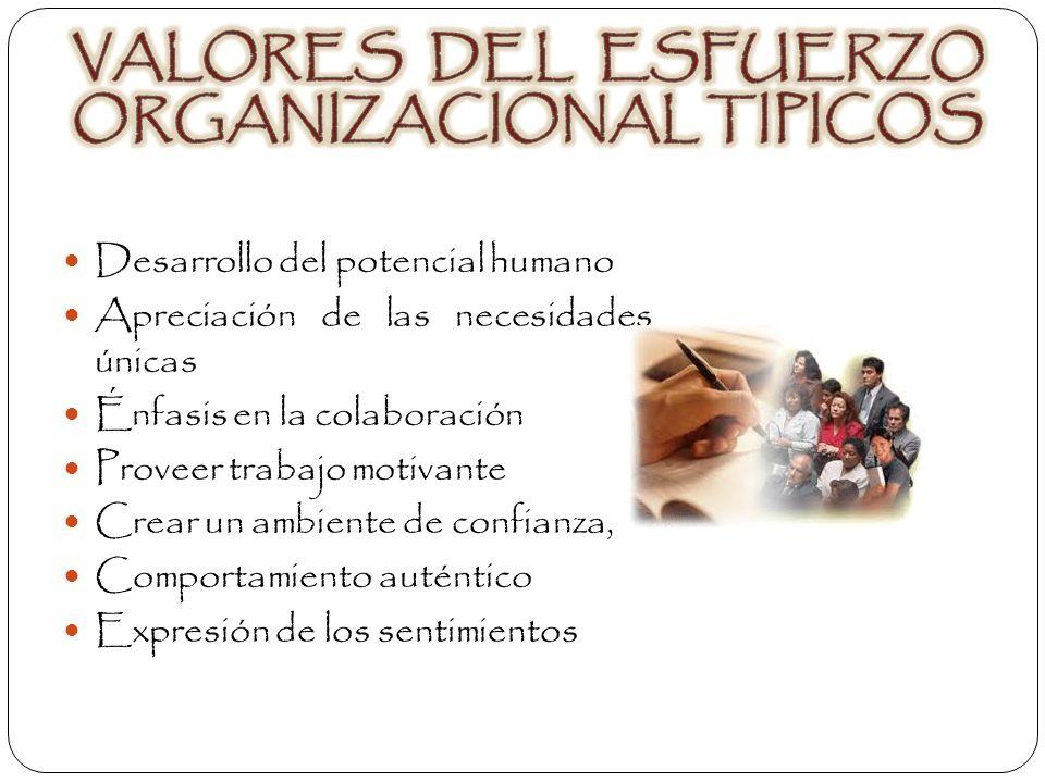 VALORES DEL ESFUERZO ORGANIZACIONAL TIPICOS