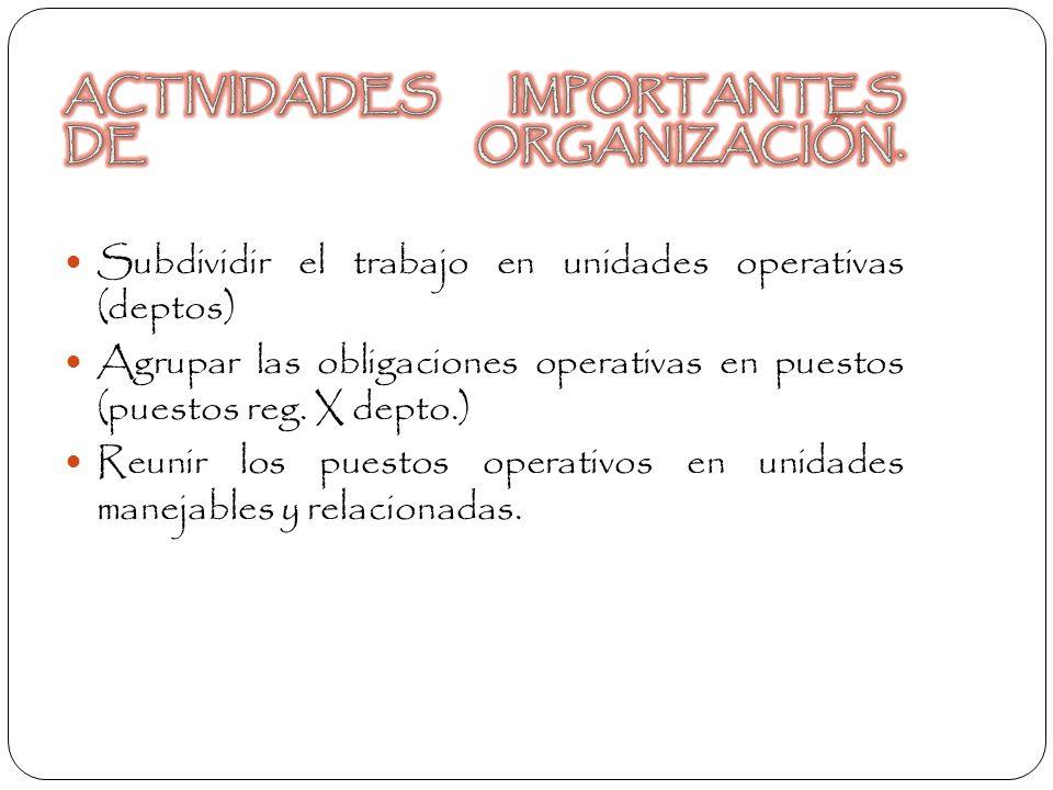 ACTIVIDADES IMPORTANTES DE ORGANIZACIÓN.