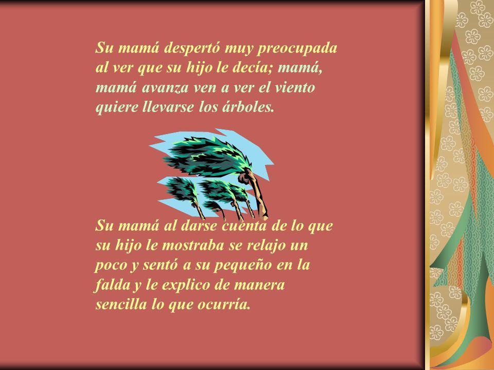 Su mamá despertó muy preocupada al ver que su hijo le decía; mamá, mamá avanza ven a ver el viento quiere llevarse los árboles.