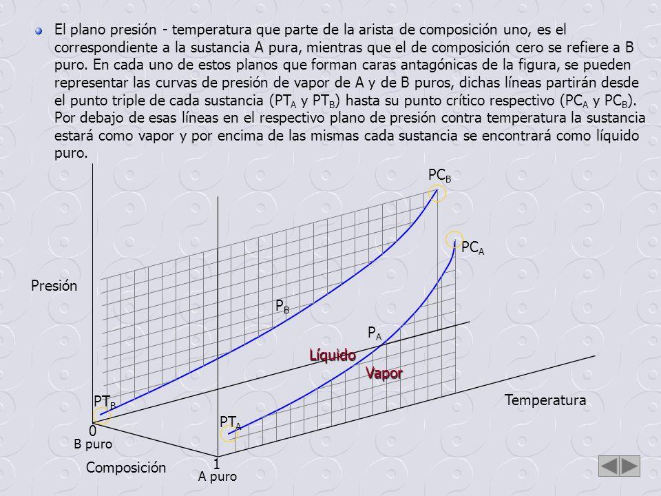 El plano presión - temperatura que parte de la arista de composición uno, es el correspondiente a la sustancia A pura, mientras que el de composición cero se refiere a B puro. En cada uno de estos planos que forman caras antagónicas de la figura, se pueden representar las curvas de presión de vapor de A y de B puros, dichas líneas partirán desde el punto triple de cada sustancia (PTA y PTB) hasta su punto crítico respectivo (PCA y PCB). Por debajo de esas líneas en el respectivo plano de presión contra temperatura la sustancia estará como vapor y por encima de las mismas cada sustancia se encontrará como líquido puro.