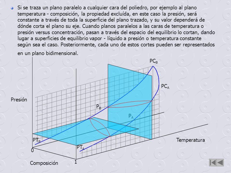 Si se traza un plano paralelo a cualquier cara del poliedro, por ejemplo al plano temperatura - composición, la propiedad excluída, en este caso la presión, será constante a través de toda la superficie del plano trazado, y su valor dependerá de dónde corta el plano su eje. Cuando planos paralelos a las caras de temperatura o presión versus concentración, pasan a través del espacio del equilibrio lo cortan, dando lugar a superficies de equilibrio vapor - líquido a presión o temperatura constante según sea el caso. Posteriormente, cada uno de estos cortes pueden ser representados en un plano bidimensional.