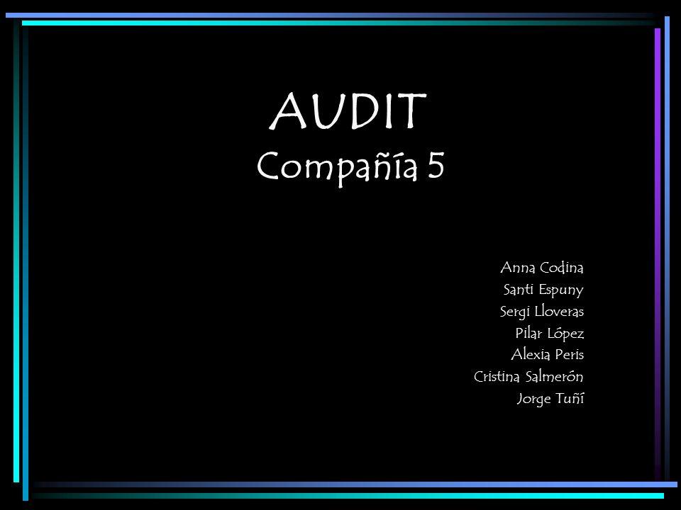 AUDIT Compañía 5 Anna Codina Santi Espuny Sergi Lloveras Pilar López